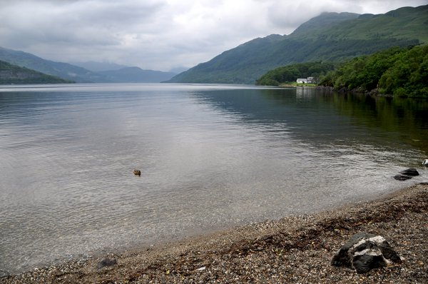 A calm Loch Lomond