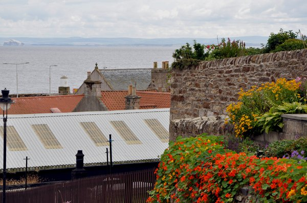 Hanging nasturium display and a view over the River Forth