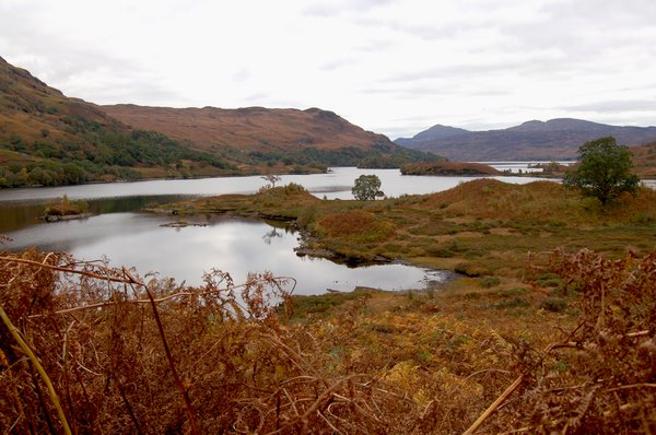 Islands in Loch Katrine
