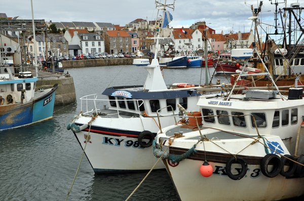 Pittenweem%20has%20been%20a%20fishing%20port%20for%20a%20very%20long%20time%20