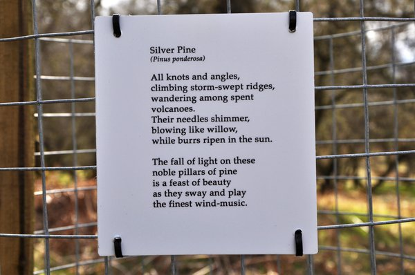 Poems are attached to the guard wire
