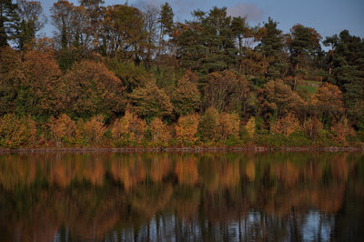 Autumn colours reflected at Mugdock Country Park