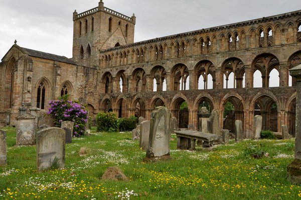 The remains of Jedburgh Abbey